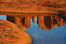Cathedral Rock reflection by Tom White