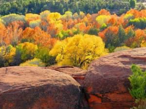Thanksgiving weekend – Sedona & Hopi