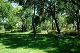 Montezuma Well picnic area
