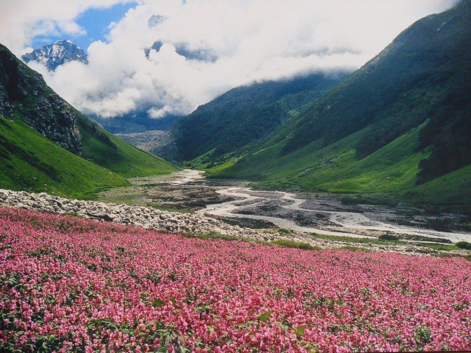 Valley of flowers trek is among the must do breathtaking trek in India