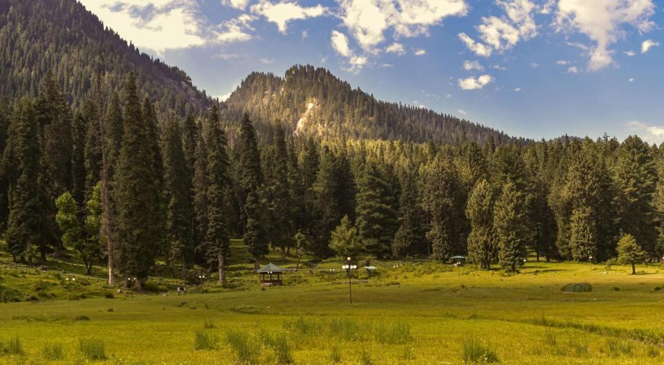 Landscape Image Shot at Betaab Valley, Pahalgam