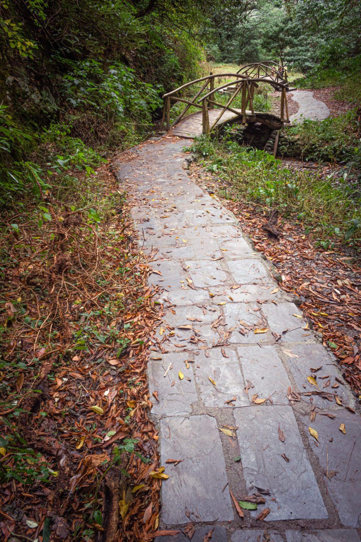 Zig -Zag Autumn Trail to the Waterfall