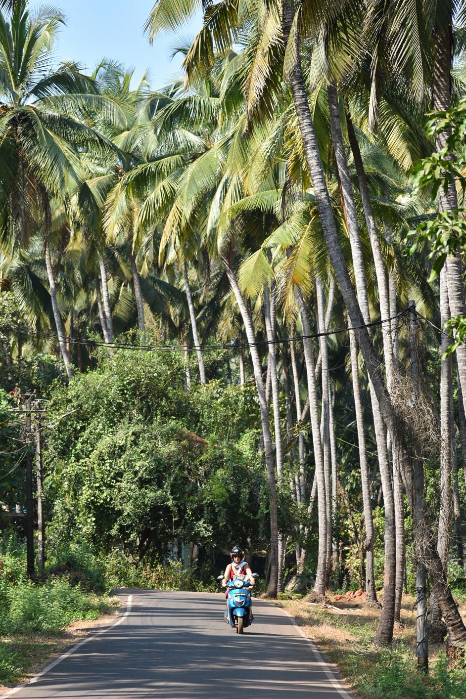 Tourist Riding on a Two Wheeler in Goa