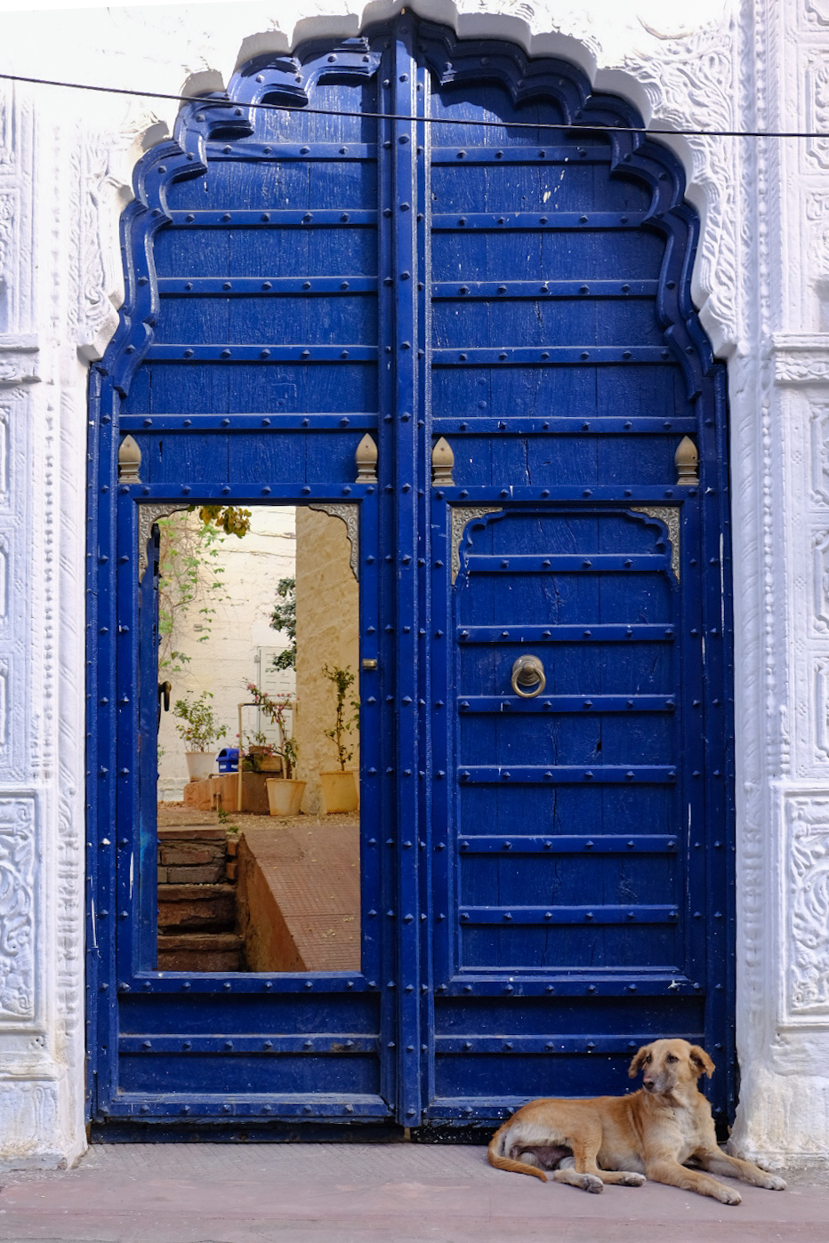Colorful doors spotted while exploring the Jodhpur Streets