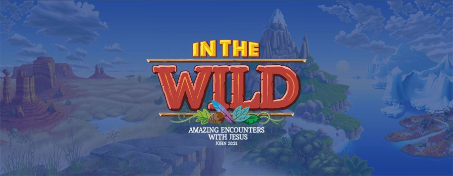 VBS 2019: In the Wild