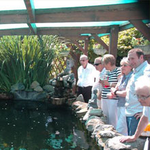 Open Pond Day – August