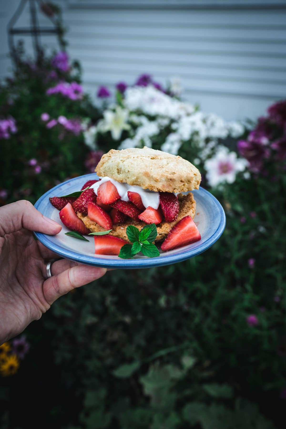 a person holding a plate of a vegan gluten free strawberry shortcake in front of a garden outdoors