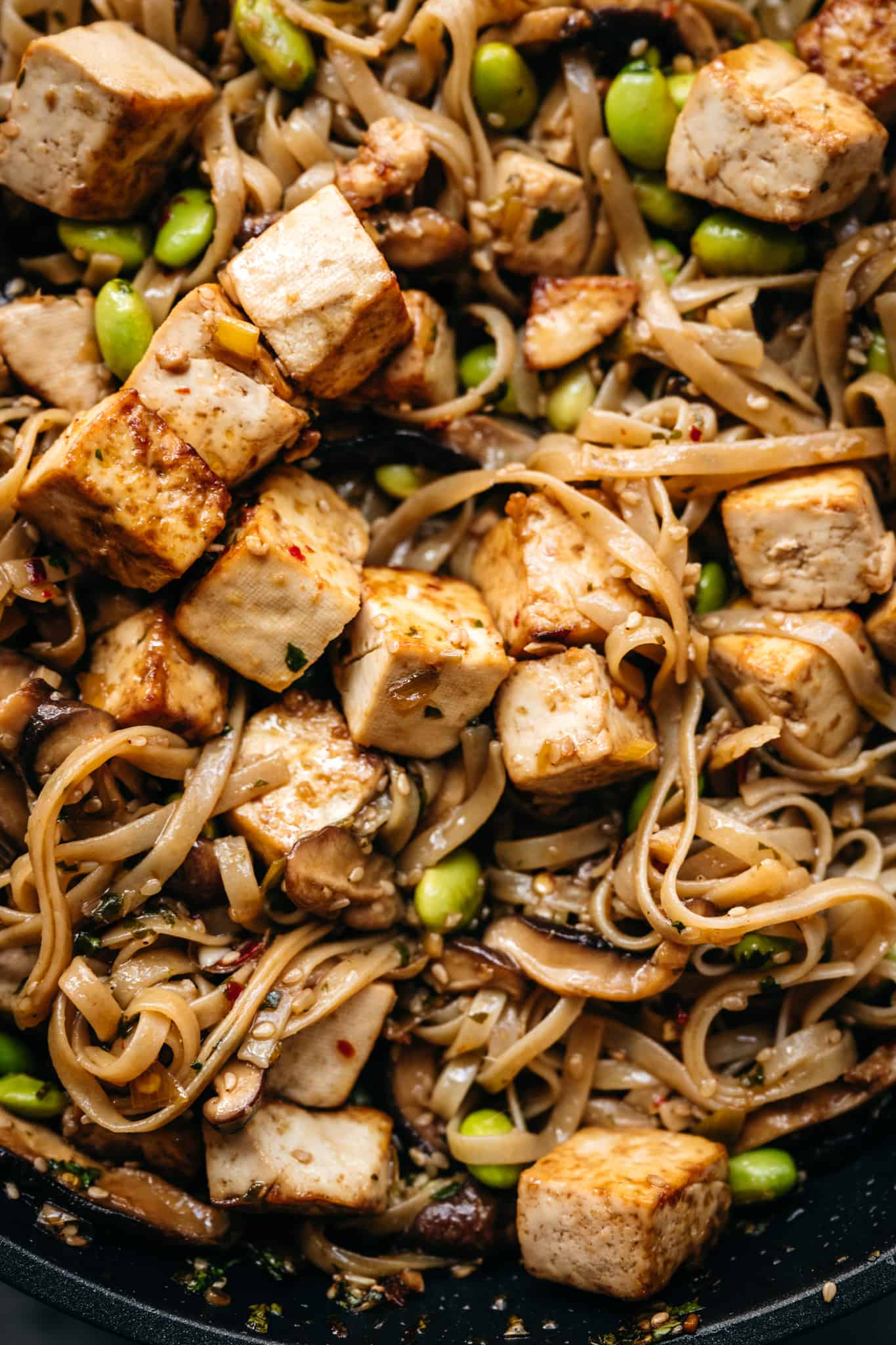 close up view of crispy tofu with rice noodles