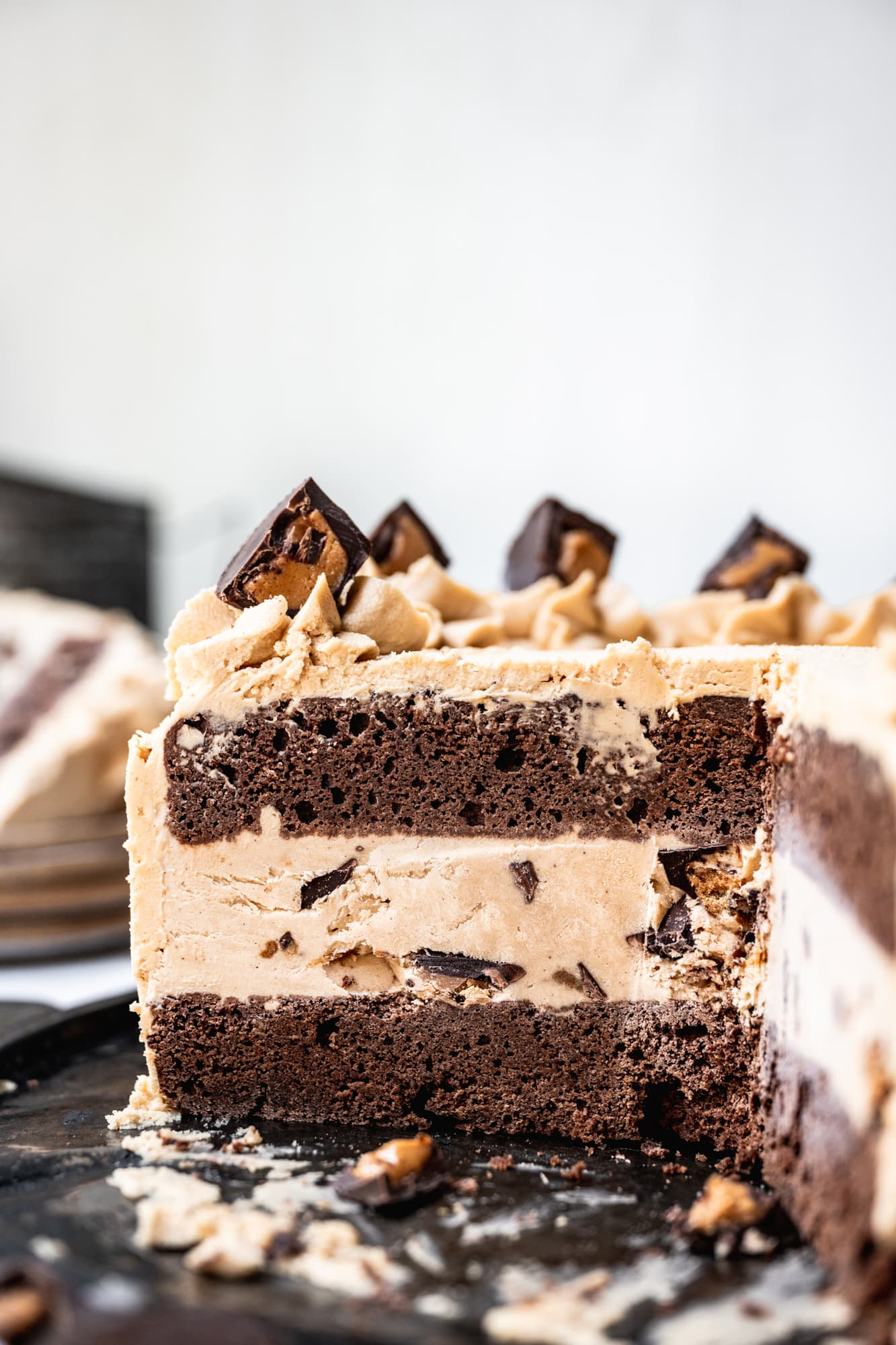 side view of cross section of chocolate peanut butter ice cream cake