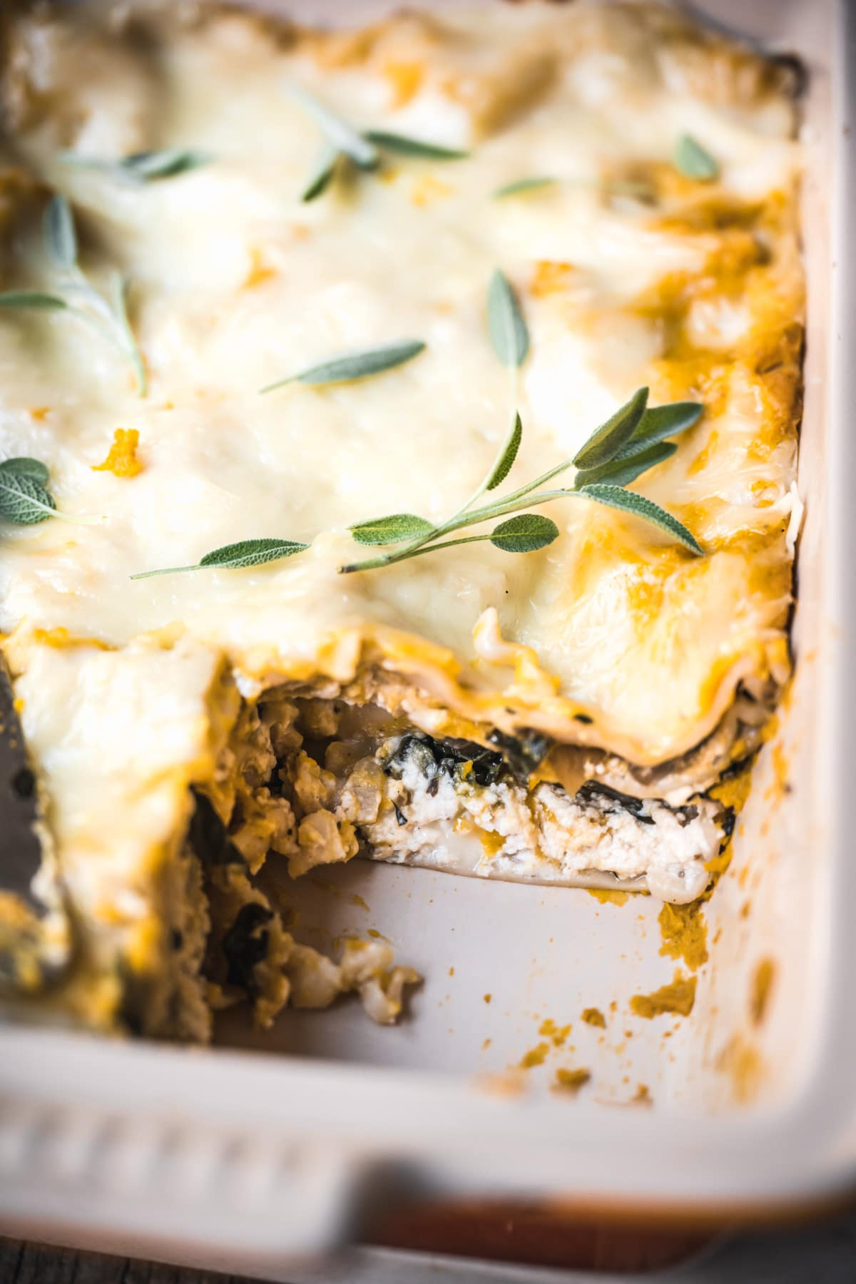 close up view of slice of vegan butternut squash lasagna with layer of ricotta and mushrooms/spinach.