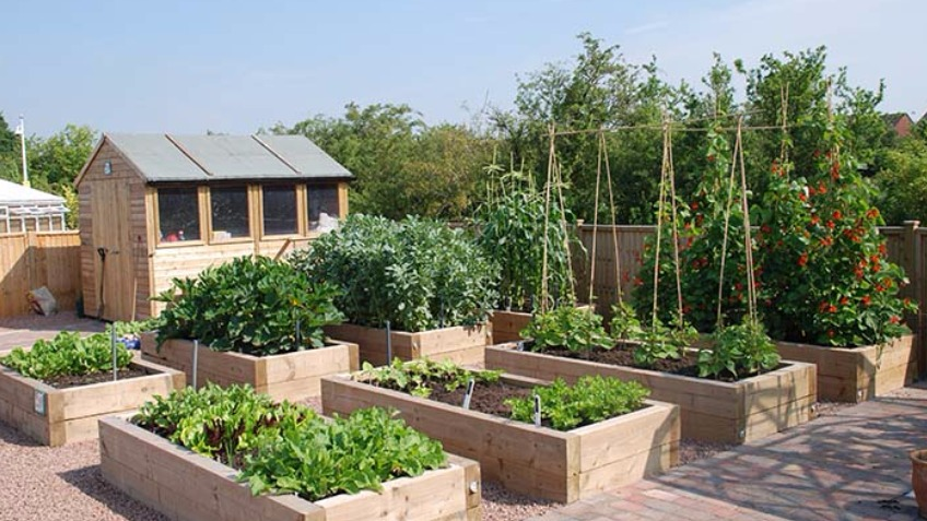 The Eating Place  Community Kitchen Garden a Charities