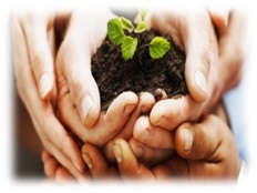crowdfunding crowdlending crowdequity credit fr donner sens epargne futur investissement pme