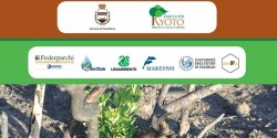10mila alberi Pantelleria crowdfunding