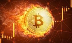 Bitcoin stabilizza la sua crescita e diventa il nuovo oro