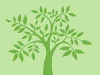 The Kiva Tree