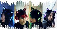 Cat Ears Headphones 2