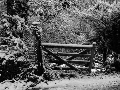 Snow January 2013