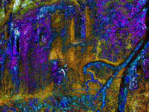 Fairy House II by Roger Croxson