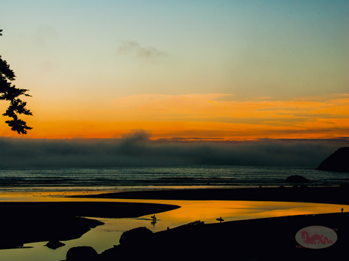 Moonstone Beach 27