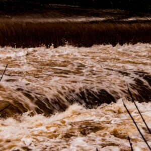 Tavy in Flood