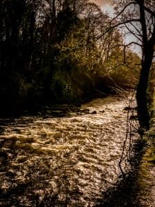 Tavy in Flood 15