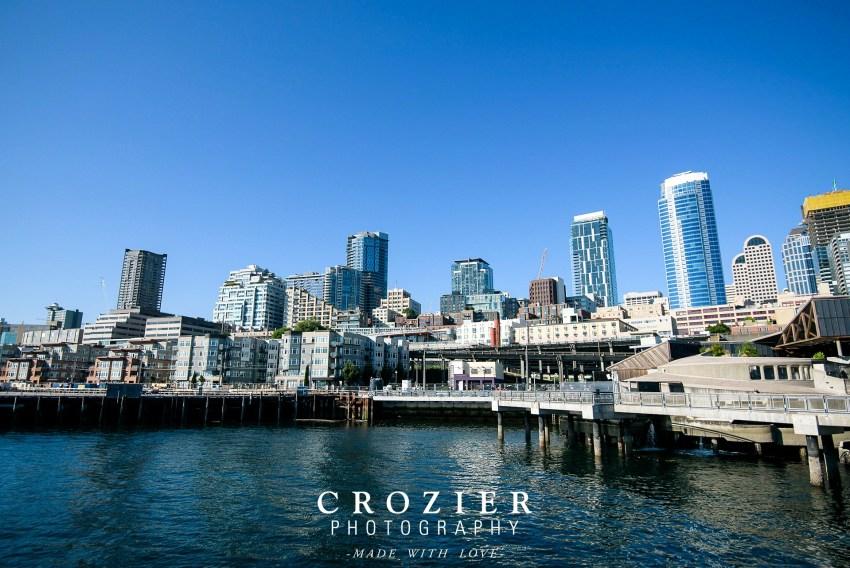 Seattle skyline from aquarium
