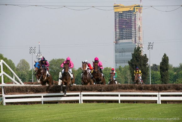Steeple Chase-36