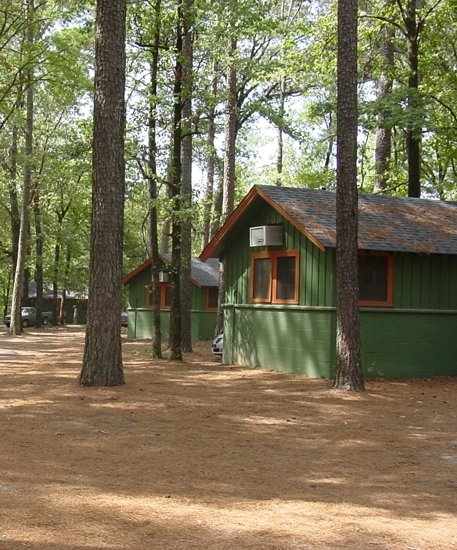 Lake Bistineau State Park  Louisiana Office of State Parks