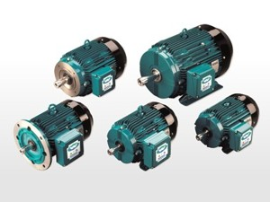 Brook Crompton Ac Motors