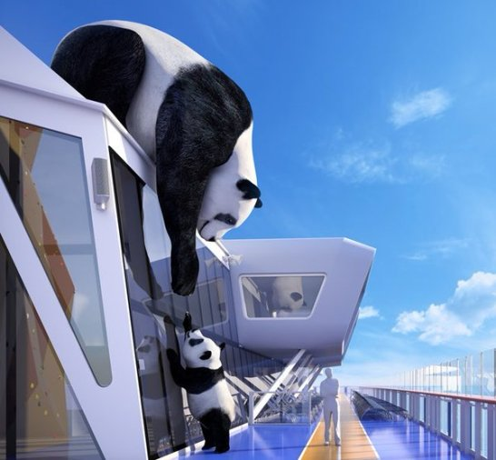 ROYAL PANDAS