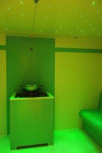2_Bio_Sauna