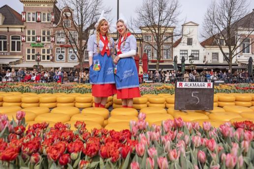 Copyright Alkmaar Marketing
