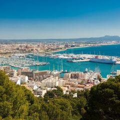 20.000 personas llegan al Puerto de Palma de Mallorca a bordo de 7 cruceros