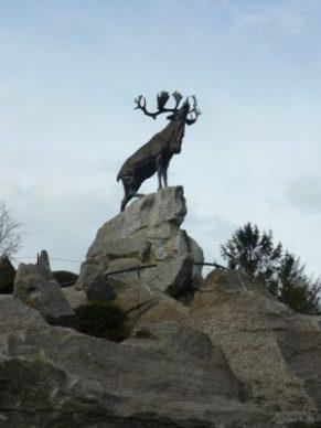 Kariboe in Newfoundland Memorial Park (1)