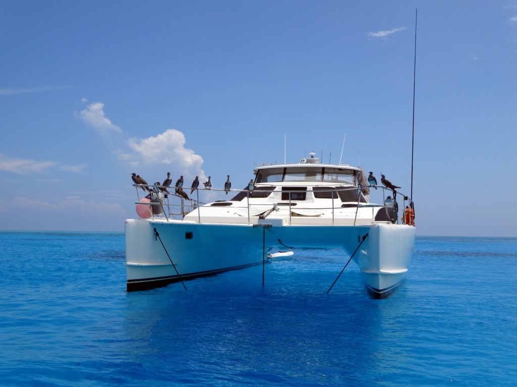 Our-boat-Flash-dancer-at-rest-in-the-Coral-Sea