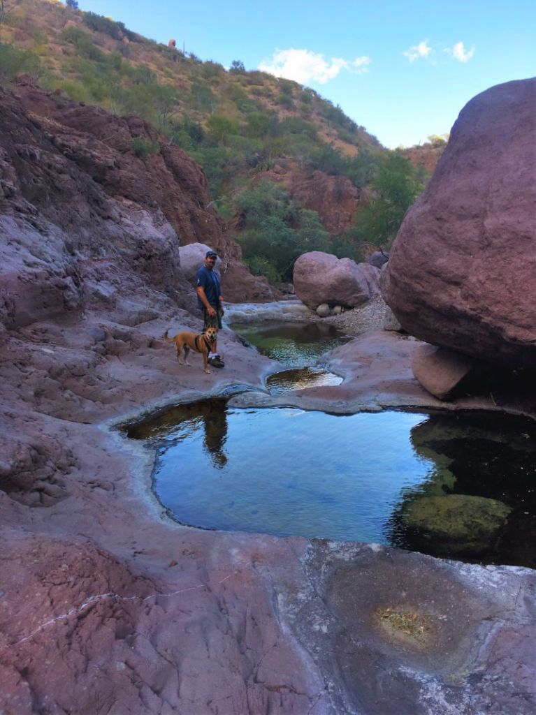 Adam N Foxy reflected in the Steinbeck Canyon pools