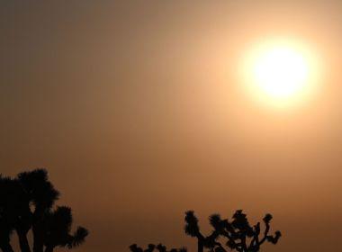 Les décès liés à la chaleur devraient augmenter après la mort de 1,7 million de personnes en 2019 en raison de températures extrêmes (étude)