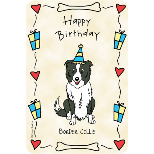 Border Collie Happy Birthday
