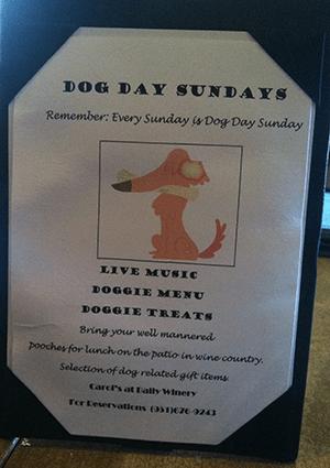 Baily Dog Day Sundays