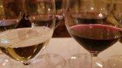 Uruguay Wines