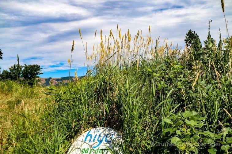 Hiyu Farm
