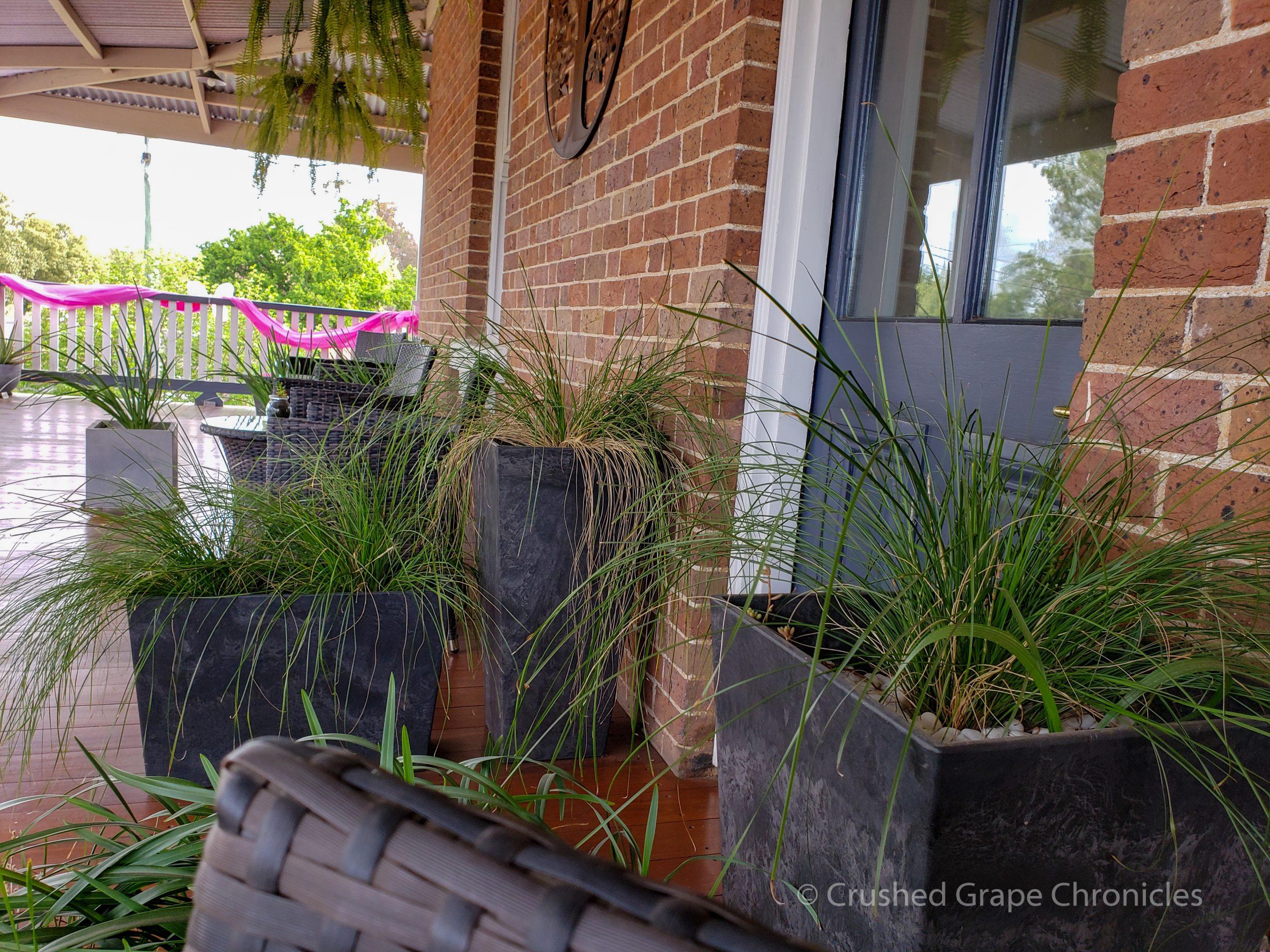 The veranda at the Parkview Hotel overlooking Robertson Park Mudgee NSW Australia