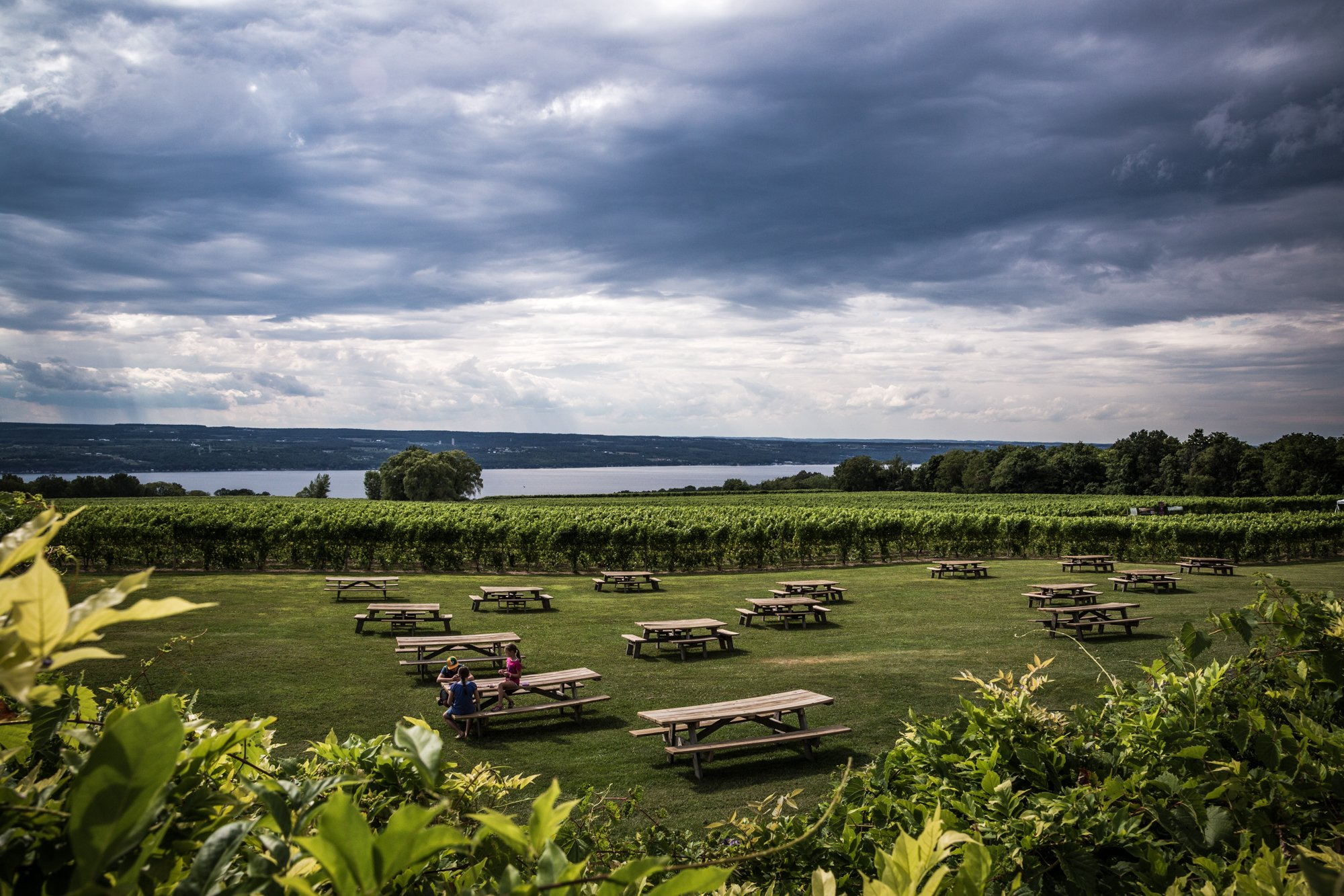 Picnic Tables at Wagner Vineyard with a view of Seneca Lake in the Finger Lakes AVA of New York State