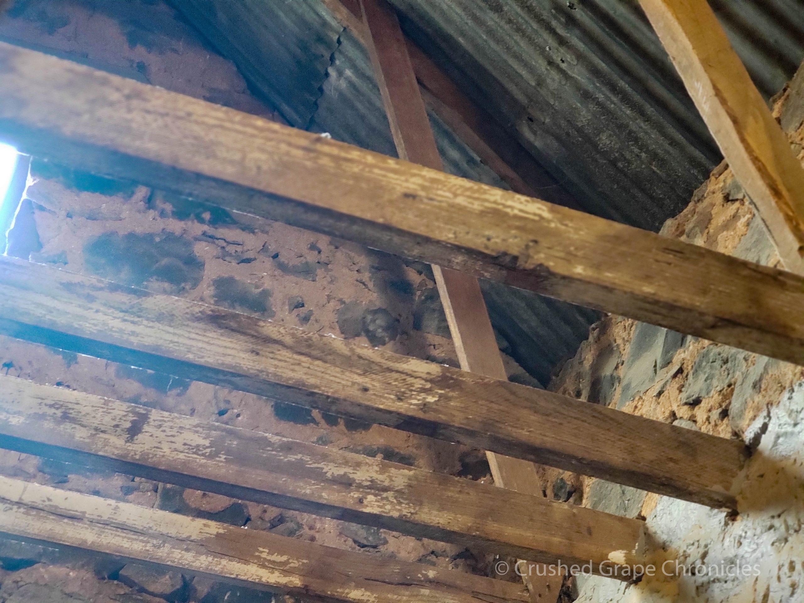 Angullong Vineyard converted stable into Cellar door in Millthorpe, Orange NSW Australia