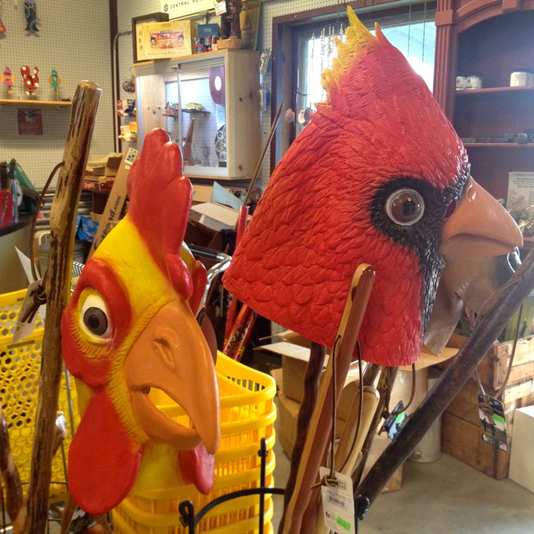 ICM Bird Masks