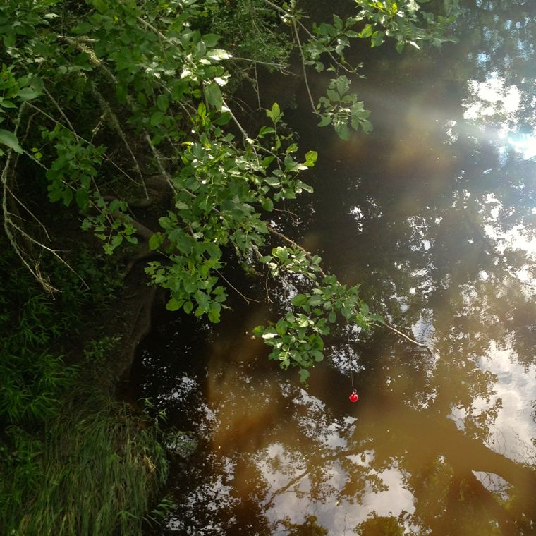 Willow Bridge Bobber