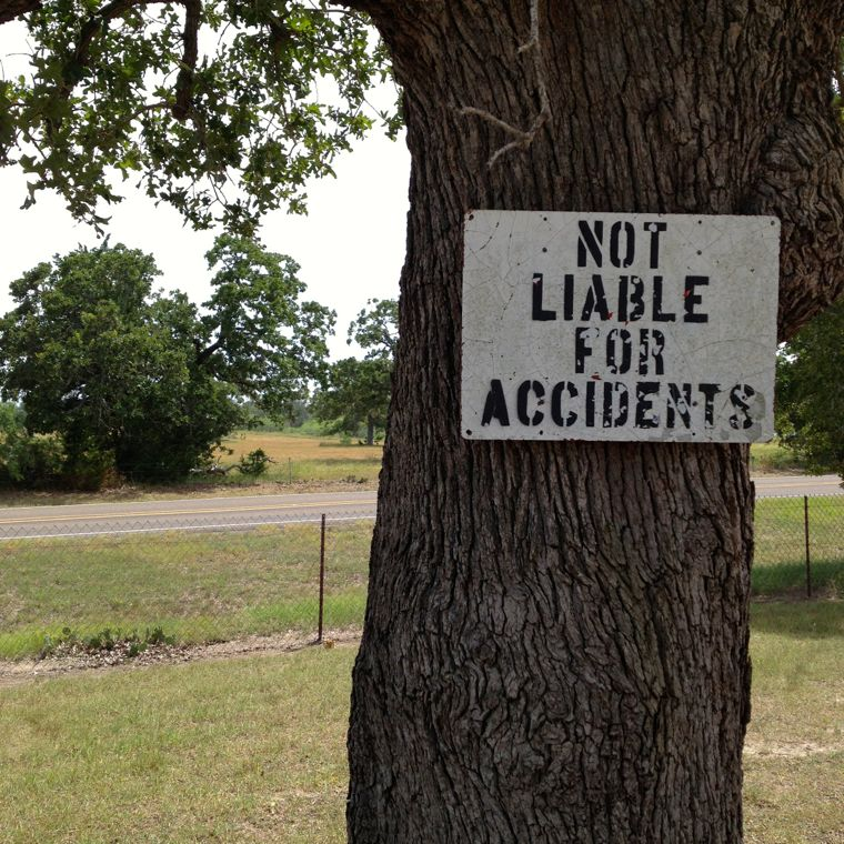 Rabbits Not Liable
