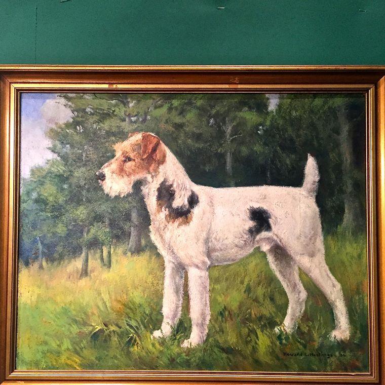 Dog Raleigh