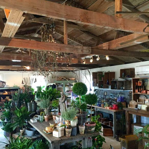 Garden Co Garden Shop
