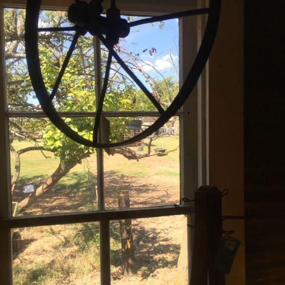 Flown the Coop Window Wheel